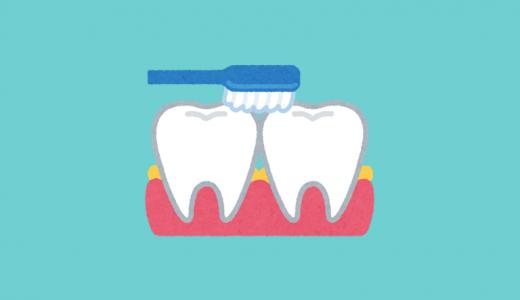 口臭の原因になる歯間の歯垢(プラーク)を掃除しよう!『歯垢を落とす』のであって『歯を磨く』のではない!